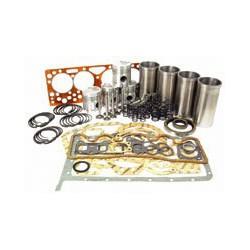 kit moteur ECO ferguson 20C